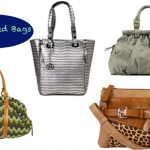 I'm loving this falls handbag trends. Embellished handbags will be seen everywhere and I just can't get enough of it!